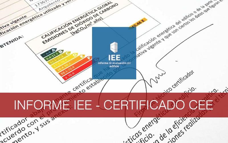 Informe IEE - Eficiencia.